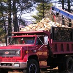 Chainsaw Repair Center Conway NH